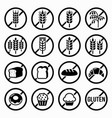 gluten free warning signs set icon vector image