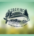 grayling fly fishing logo the lady of the river vector image vector image