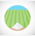 pile of rice flat ico vector image vector image