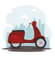 scooter bike italian isolated icon vector image vector image
