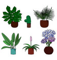 set of cute flowers in pot cartoon style vector image