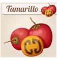Tamarillo fruit Cartoon icon Series of vector image vector image