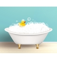 Bathtub With Foam Poster vector image