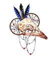 Bird Skull3 vector image vector image