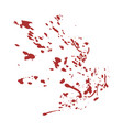blood spot vector image