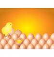chicken eggs background vector image vector image