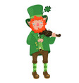 leprechaun with a violin isolated on a white vector image