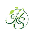 letter k s with leaf logo design vector image vector image
