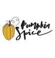 Pumpkin spice hand drawn