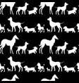 seamless pattern with white dogs silhouettes vector image