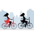 Silhouettes of pregnant women on the bike vector image vector image