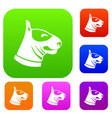 bull terrier dog set collection vector image