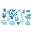 bundle of various corals and seaweed or algae vector image vector image