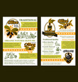 olive product poster with oil and pickled fruit vector image vector image