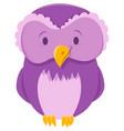 owl bird animal cartoon character vector image