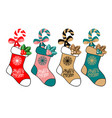 seth cute christmas socks - cartoon vector image vector image