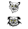 Two fierce looking owls with yellow eyes vector image