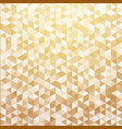 abstract luxury striped geometric triangle vector image vector image