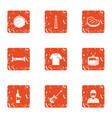 festively icons set grunge style vector image vector image