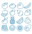 Fruits Set of line icons vector image