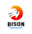 circle bison logo design template vector image vector image