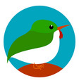 multicolor bird on white background vector image vector image