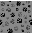 animal black foots and wildlife vector image vector image