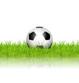 football soccer ball in grass on white background vector image