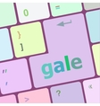 gale word on keyboard key notebook computer vector image vector image
