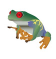 red eyed colorful frog vector image