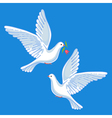 Soaring doves with flower vector image