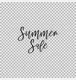 summer sale transparent background vector image vector image