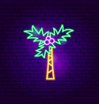 tropical palm neon sign vector image