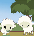 cute sheep vector image vector image