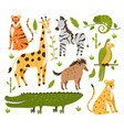 jungle animals hand drawn style flat design vector image
