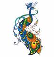 peacock drawing fantasy vector image vector image