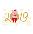 pig in a festive cap and fur mittens vector image