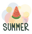 watermelon summer poster vector image