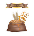 cereals and grains bag poster vector image