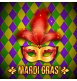 Gold and red carnival mask on colorful grid vector image vector image