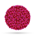 pink flower petals circle frame isolated on white vector image vector image
