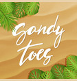 sandy toes lettering vector image vector image