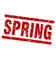 square grunge red spring stamp vector image vector image