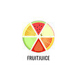 a set different fruits for logo fruit vector image vector image