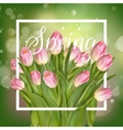 Beautiful Spring Background With Tulips EPS 10 vector image