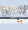 fox in winter forest hunting a duck vector image