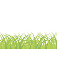 Grass background seamless pattern vector image vector image