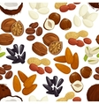 Nut bean seed grain seamless pattern background vector image vector image