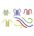 shoe lacing with colorful laces realistic vector image