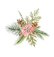 watercolor christmas bouquet with gift vector image vector image